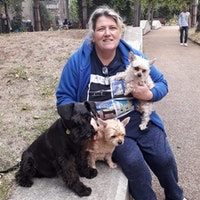 Sheila's dog day care