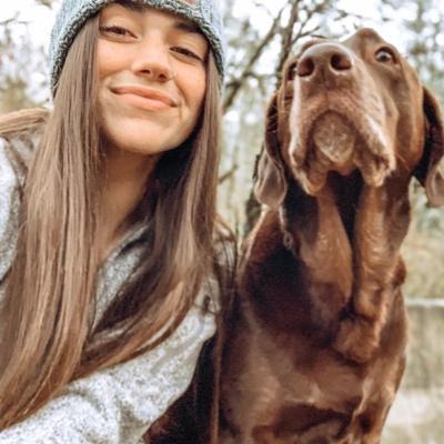 Katee's dog boarding