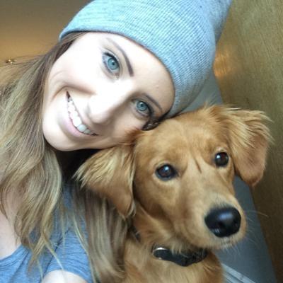 Allison's dog boarding