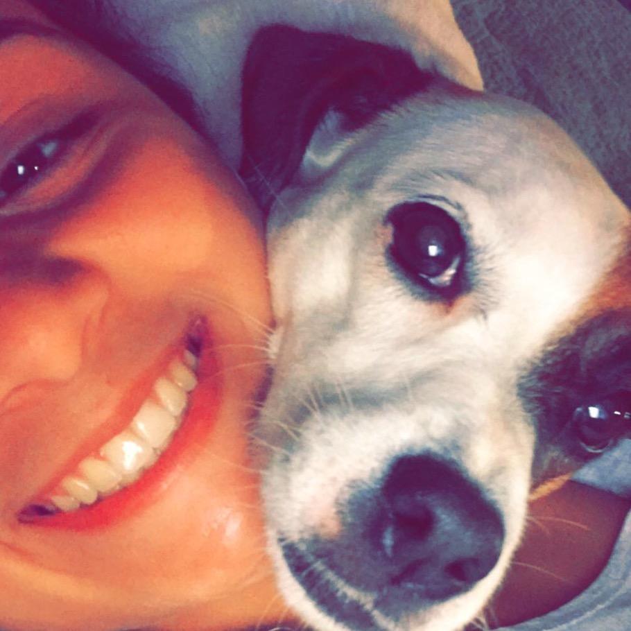 Gabriella's dog day care