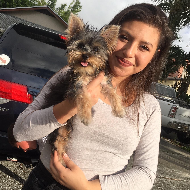 Leticia's dog boarding