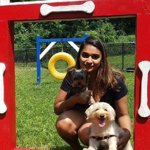 Nirali's dog day care