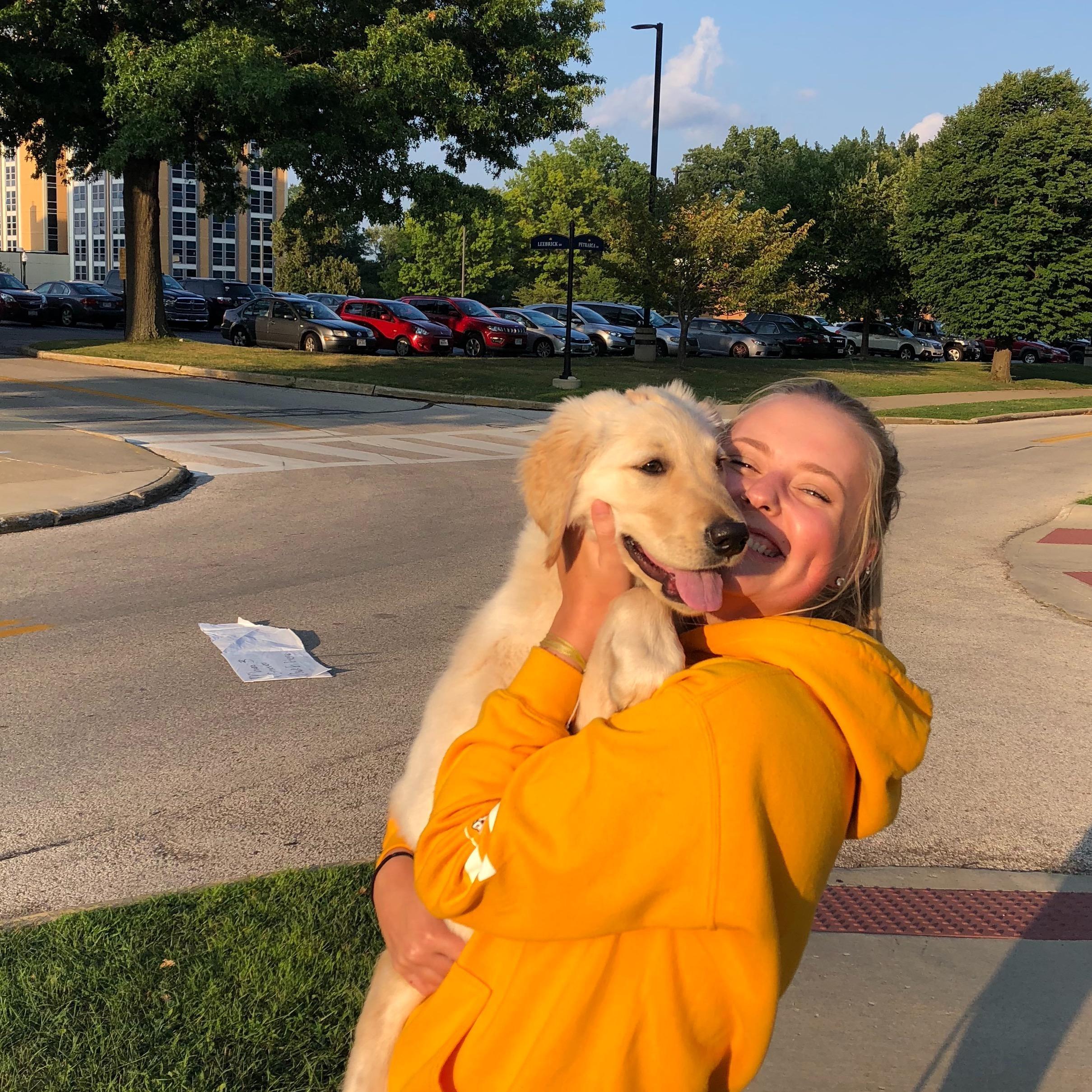 Kylie's dog boarding