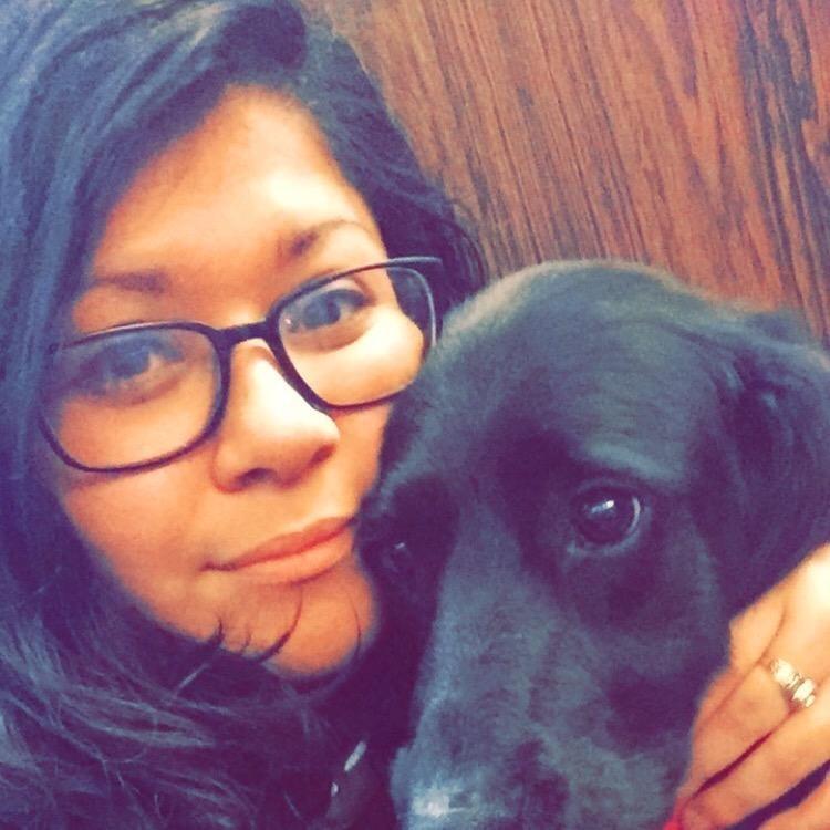 Jessica & Jose's dog day care