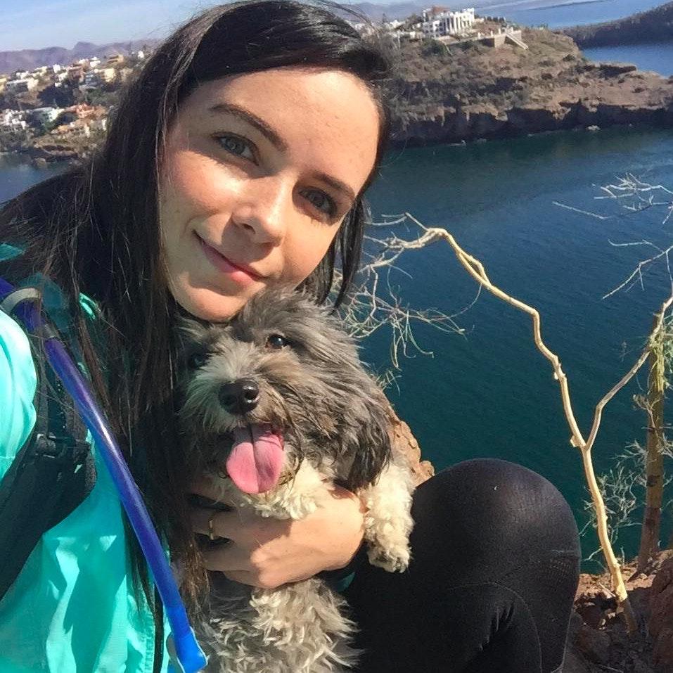 Morgan Nicole's dog day care