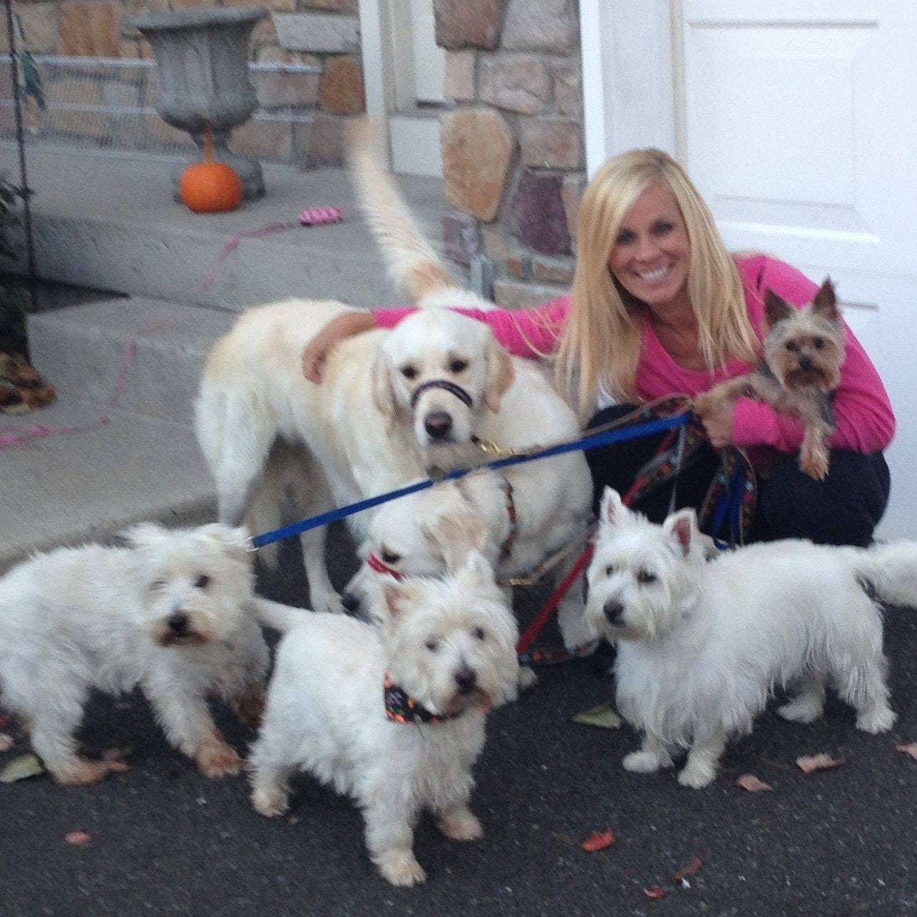 pet sitter Chrissy