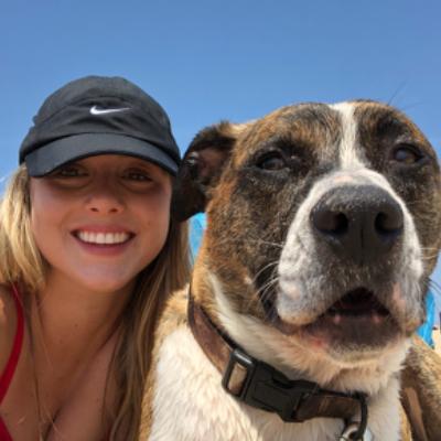 Alexia's dog boarding