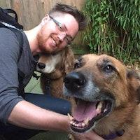 David & Sarah's dog boarding