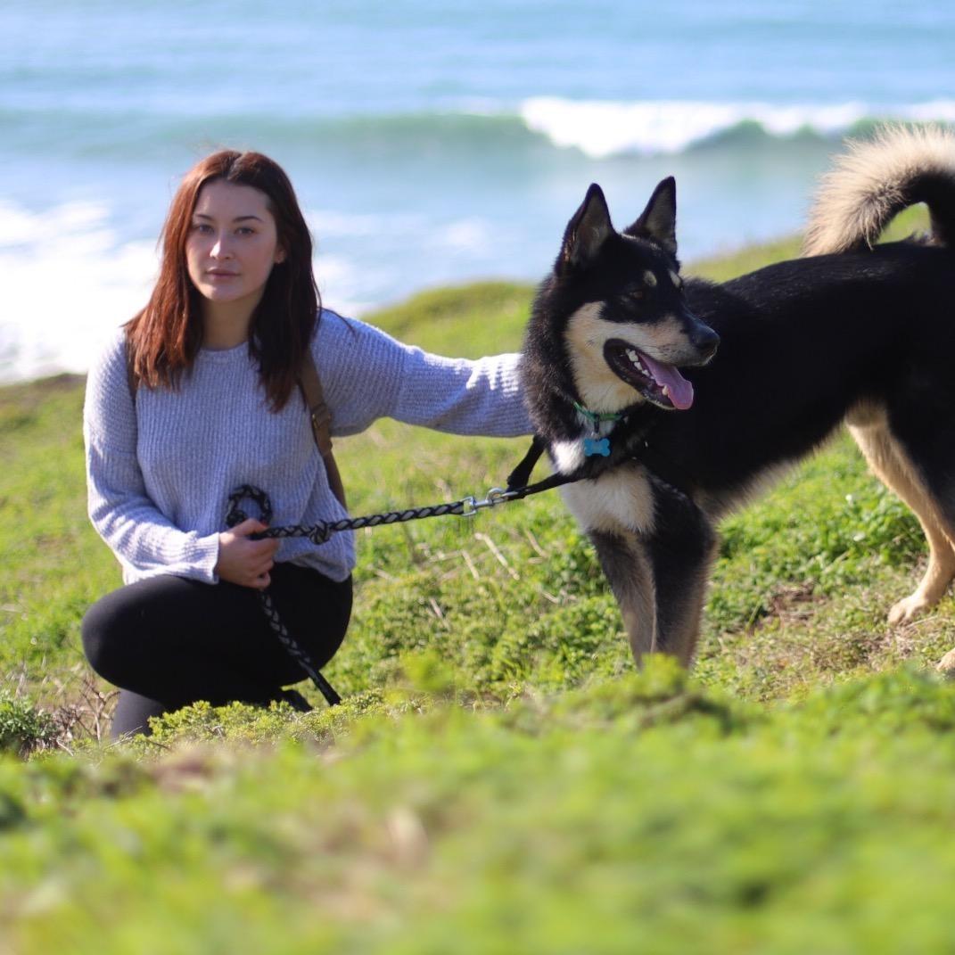 Ksenia's dog boarding