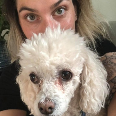 Kristin's dog boarding