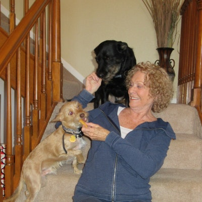 dog walker Donna