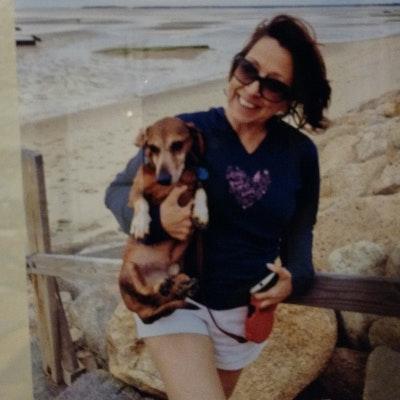 Janice's dog boarding