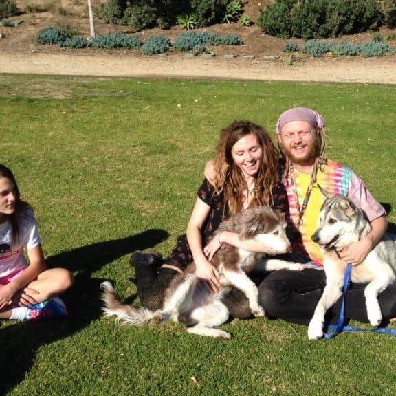 Kody's dog day care