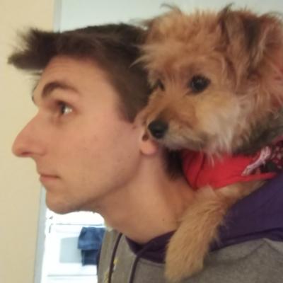 Steven's dog boarding