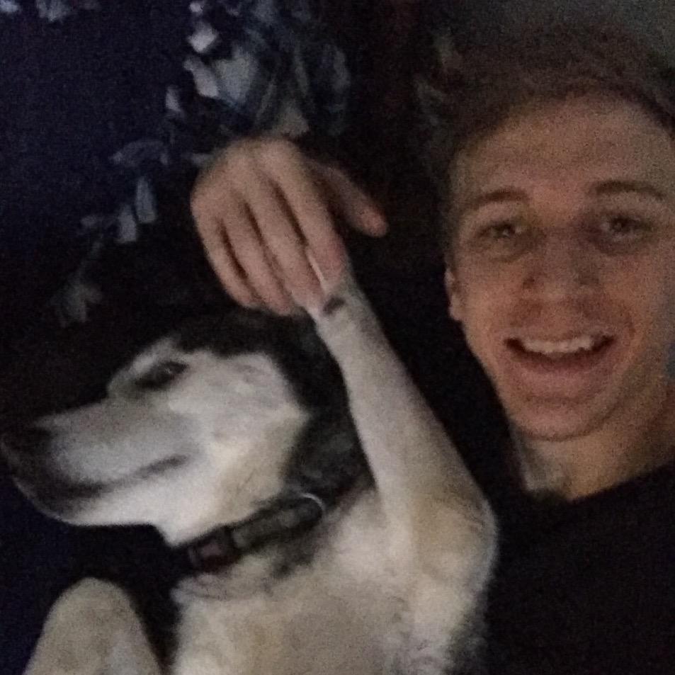 dog walker Trent