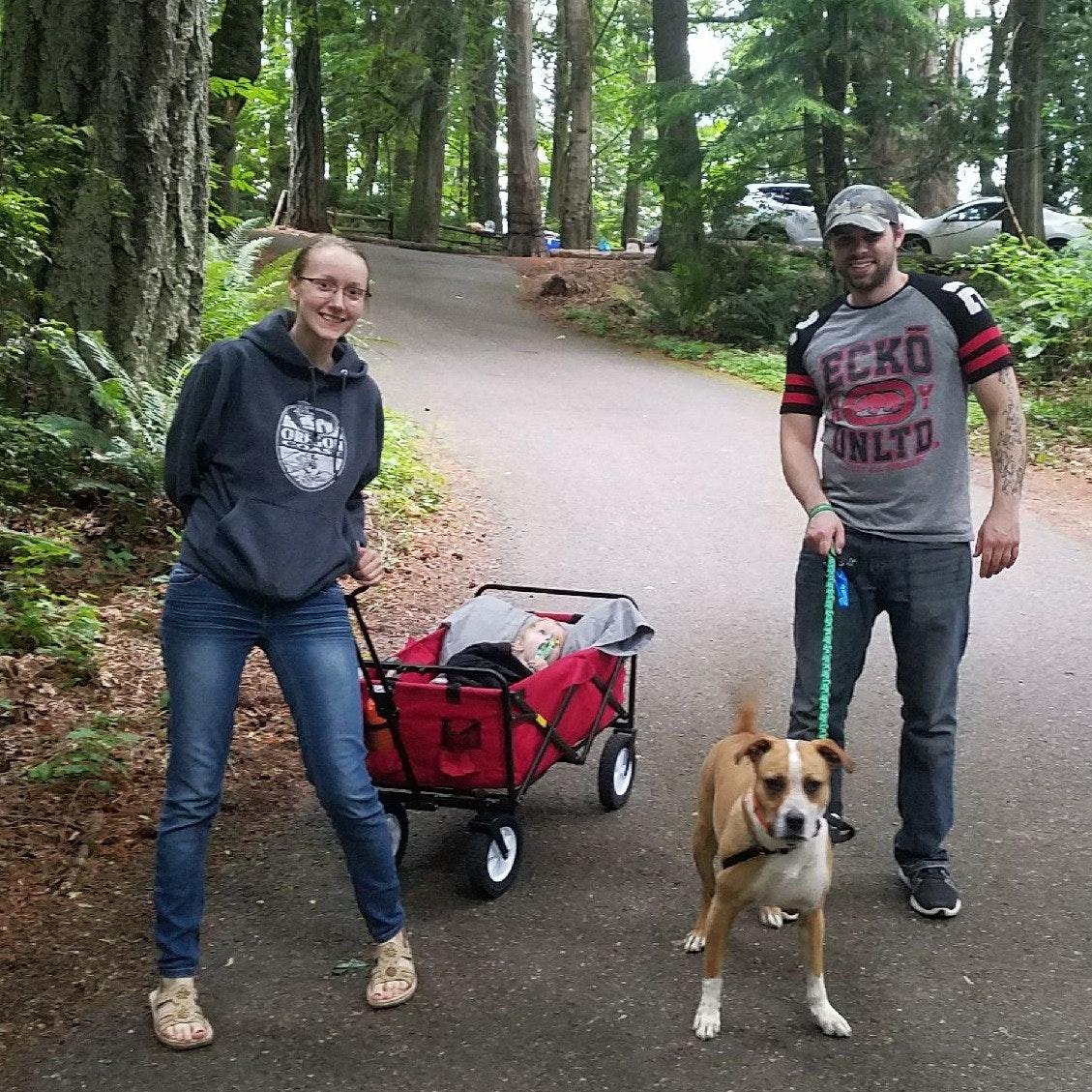 Victoria's dog boarding