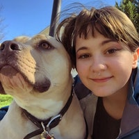 Sam's dog boarding