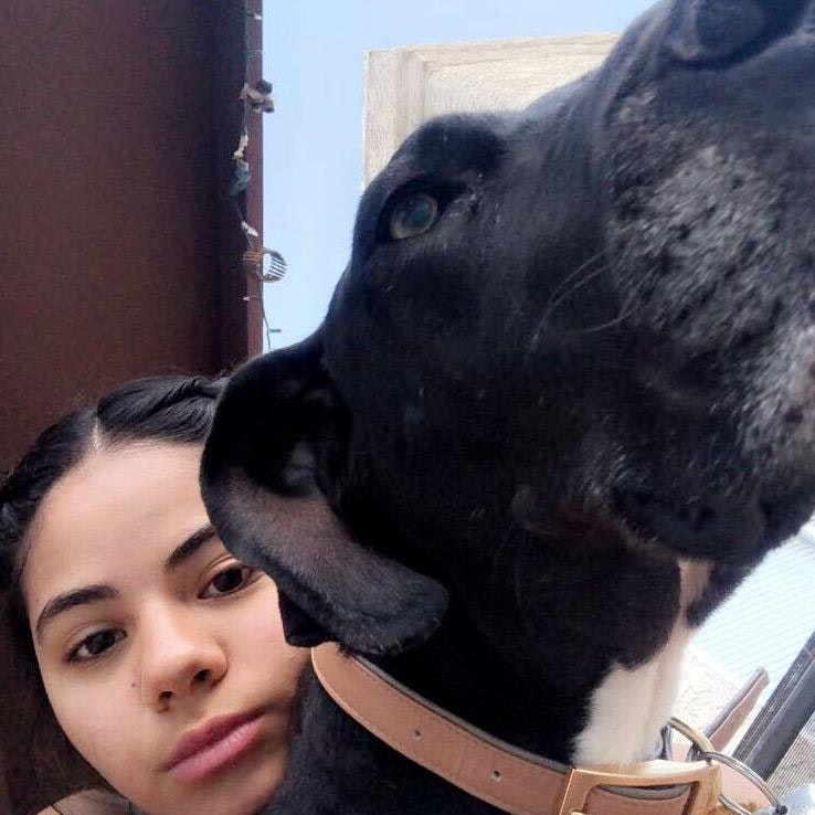 dog walker Anastasia