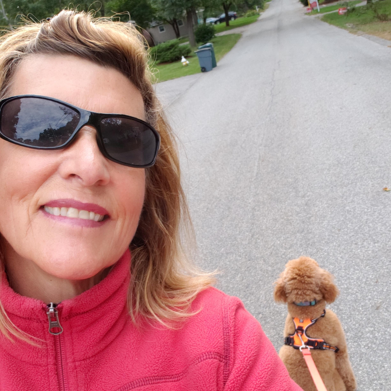 Sherry's dog boarding