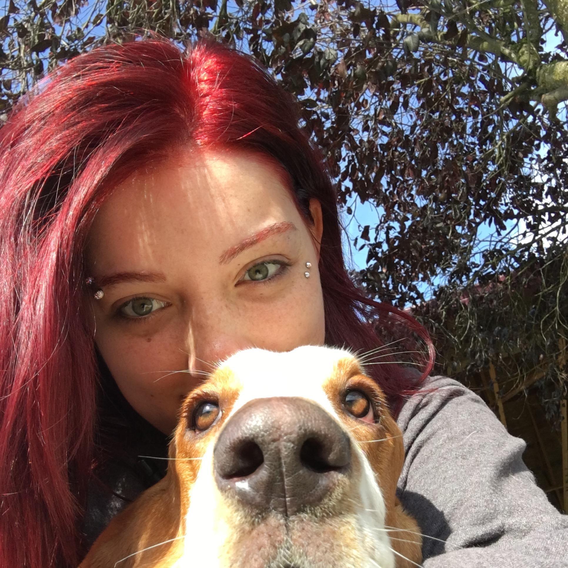 Savy's dog day care