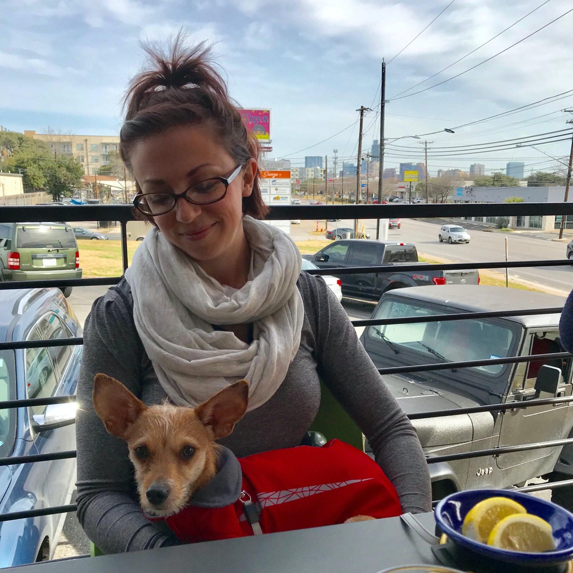 Justine's dog boarding