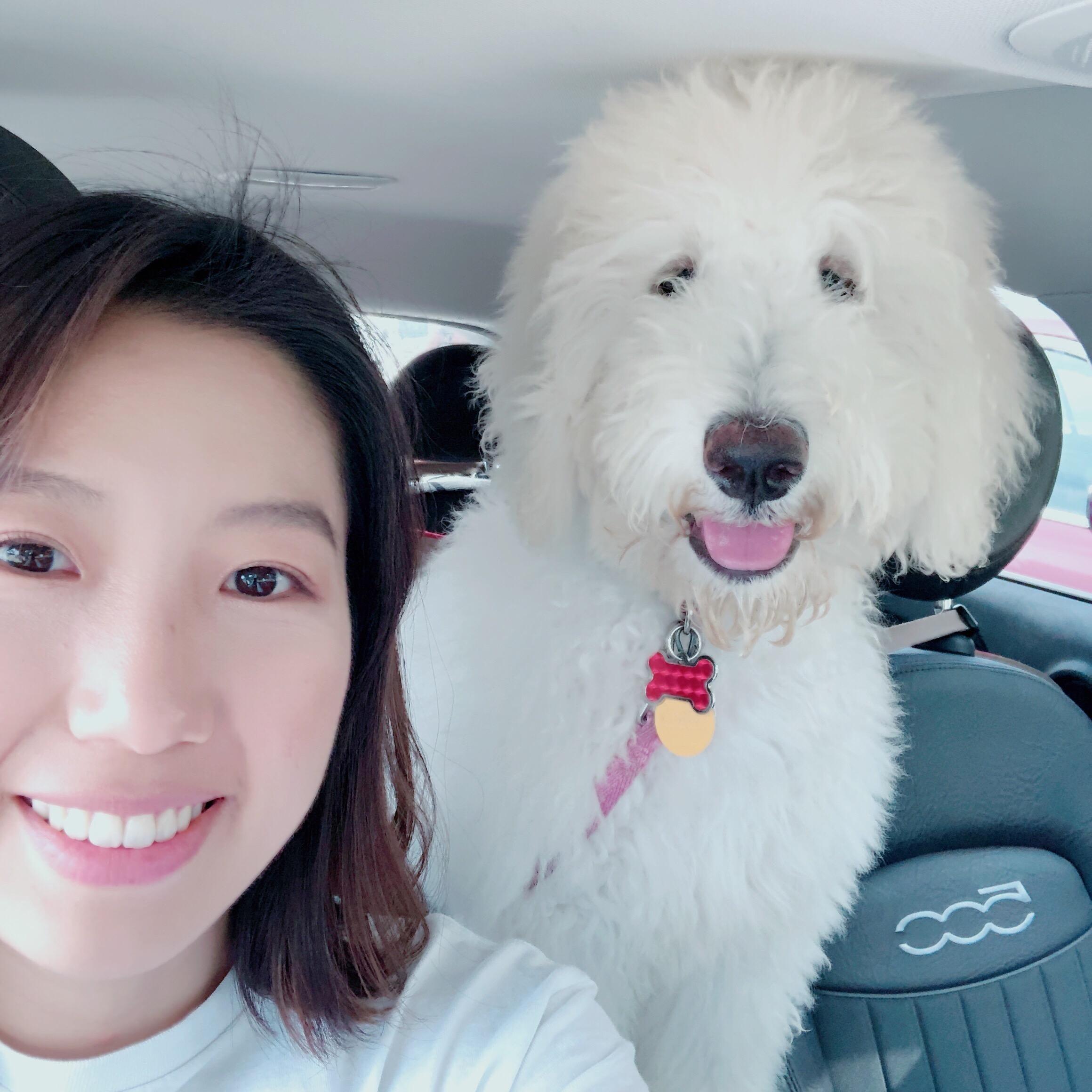 house sitter Yoonji