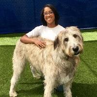 dog walker Aryn