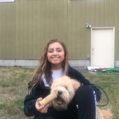 Chandra's dog day care