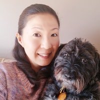 Yuki's dog day care
