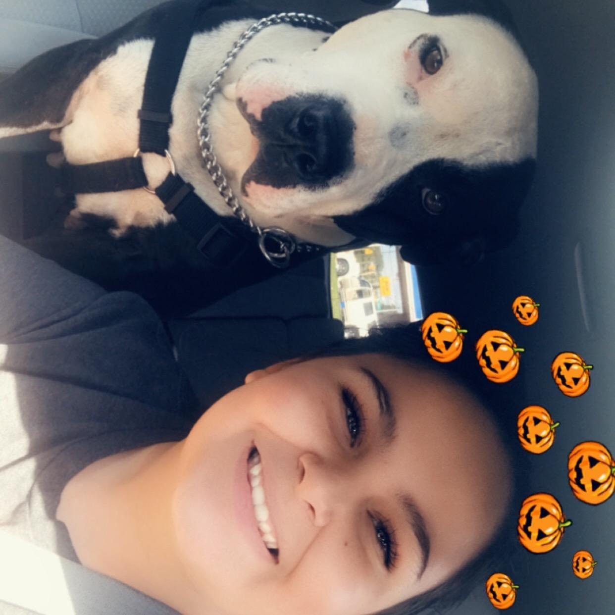 Gabbriella's dog day care