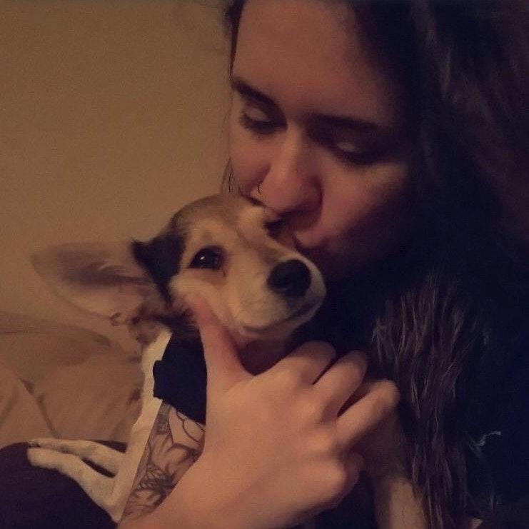 Ashlee's dog day care