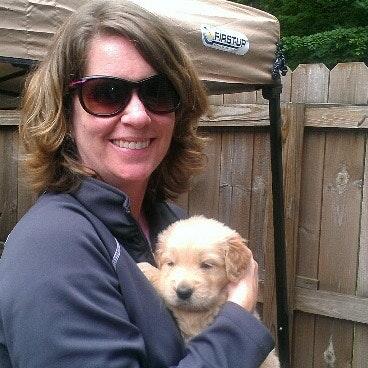 Vikki's dog day care