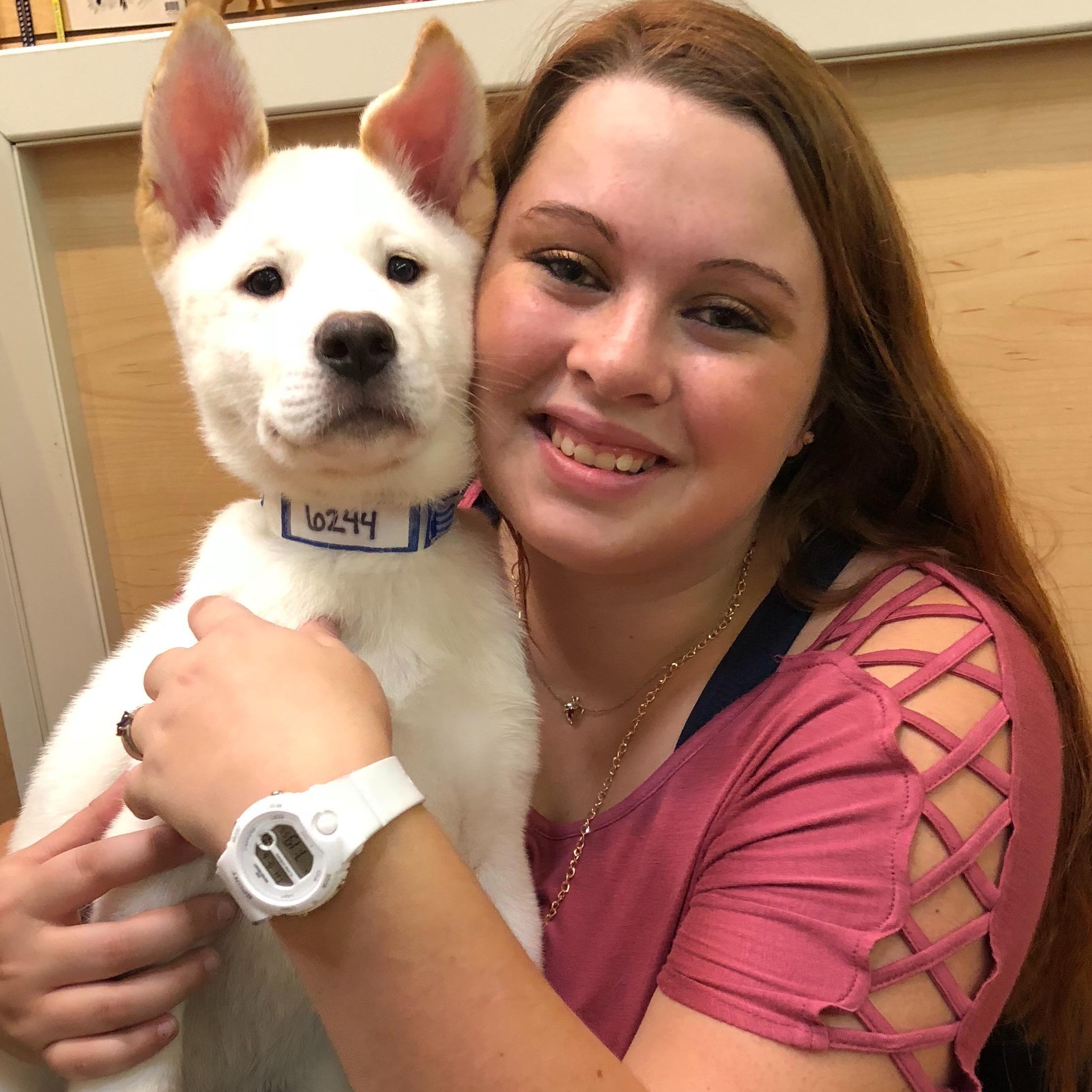 Delilah's dog day care