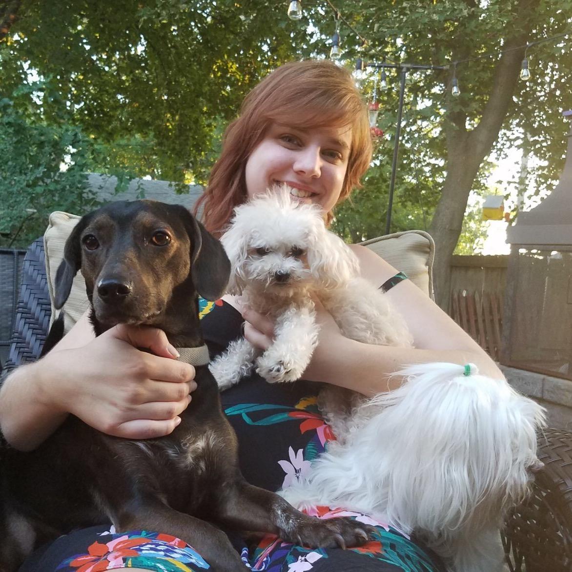 Madeline's dog day care