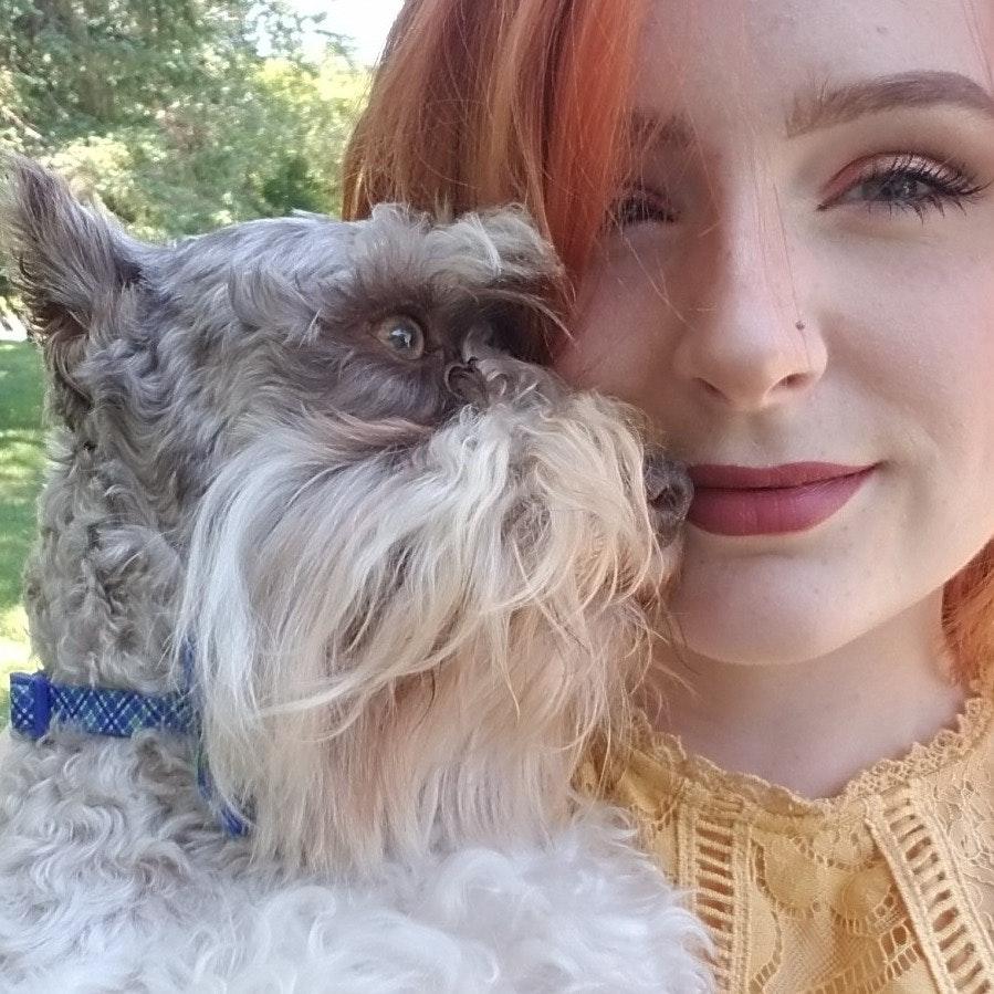 Ellen's dog boarding