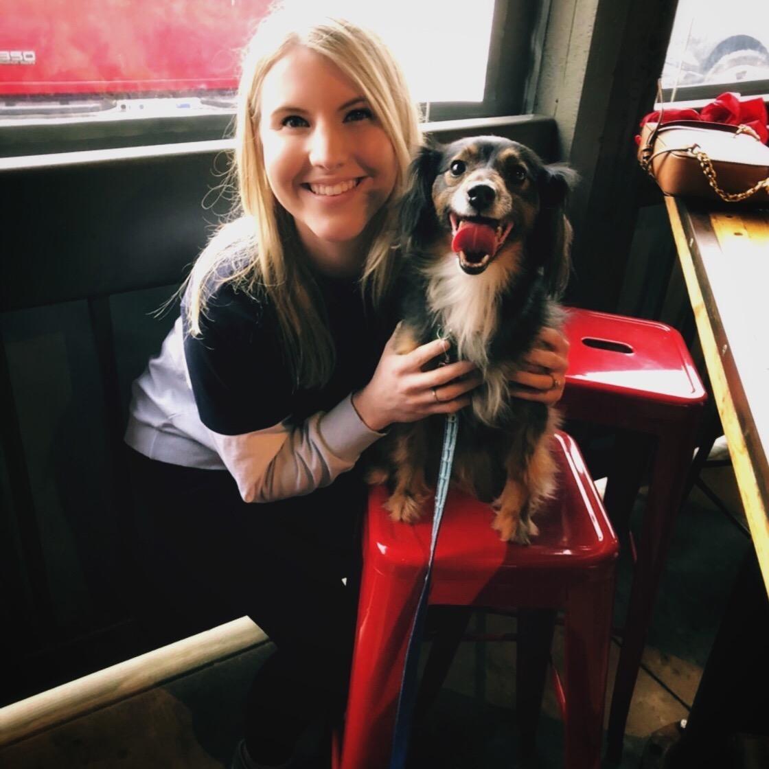 Sarah & James's dog day care