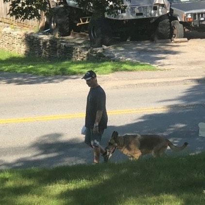 Lance's dog boarding