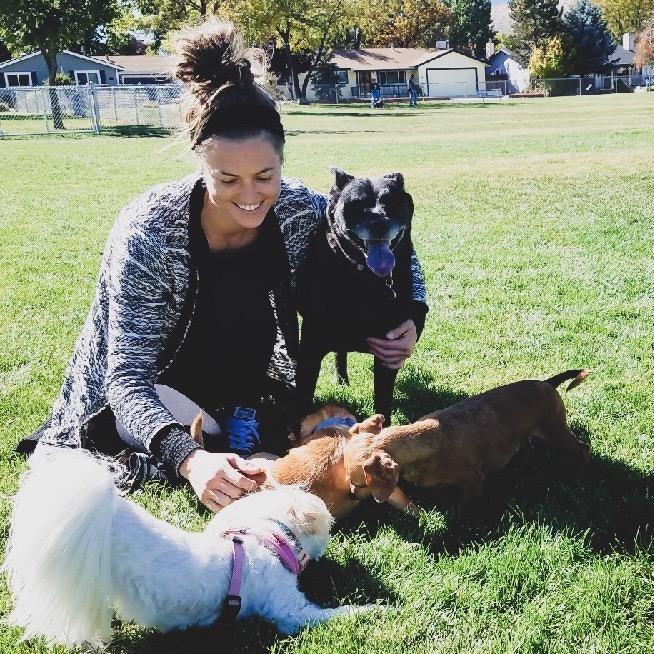 Kari's dog day care