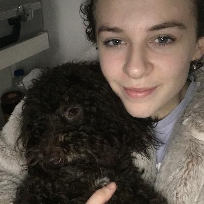 Tallulah's dog boarding