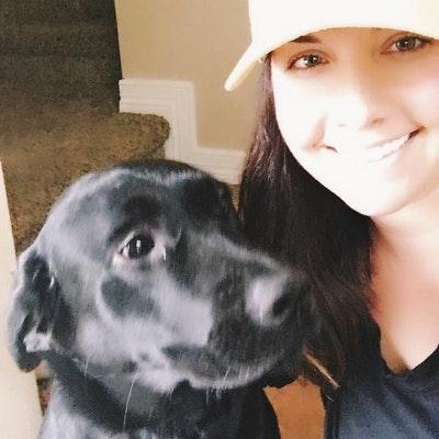 Kateland's dog day care