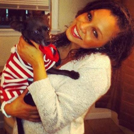 Josseline's dog day care