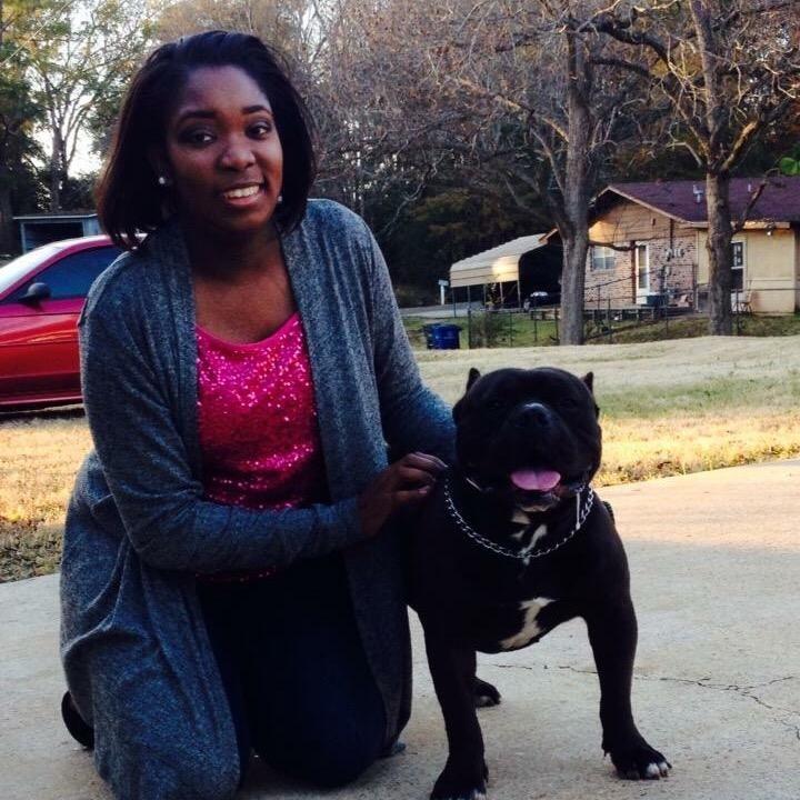 Shontal's dog day care