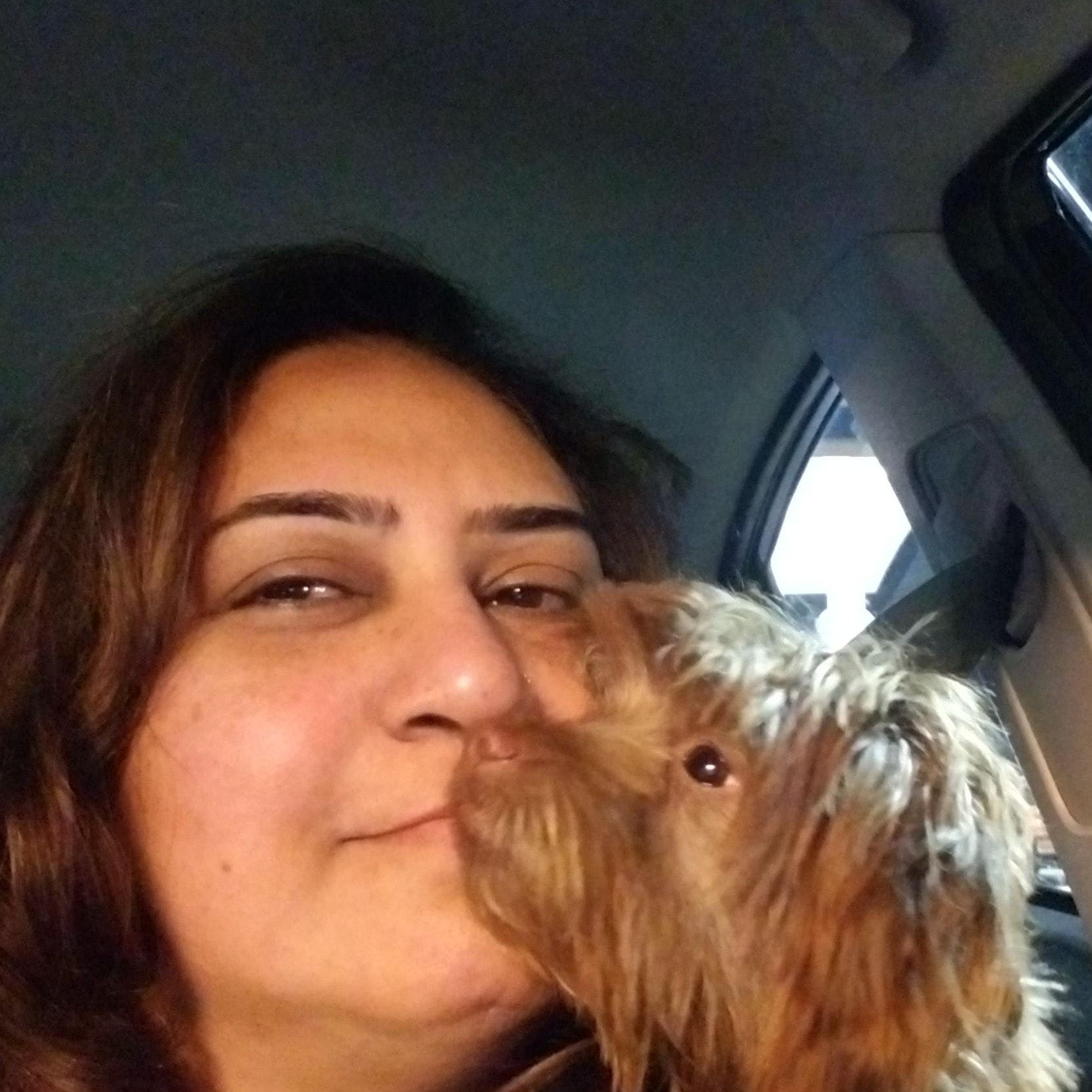 Vaishali's dog day care
