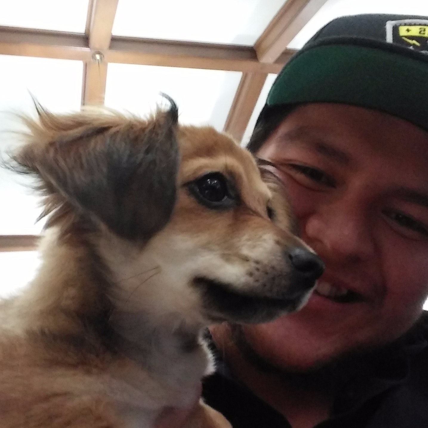 Jonathan's dog day care