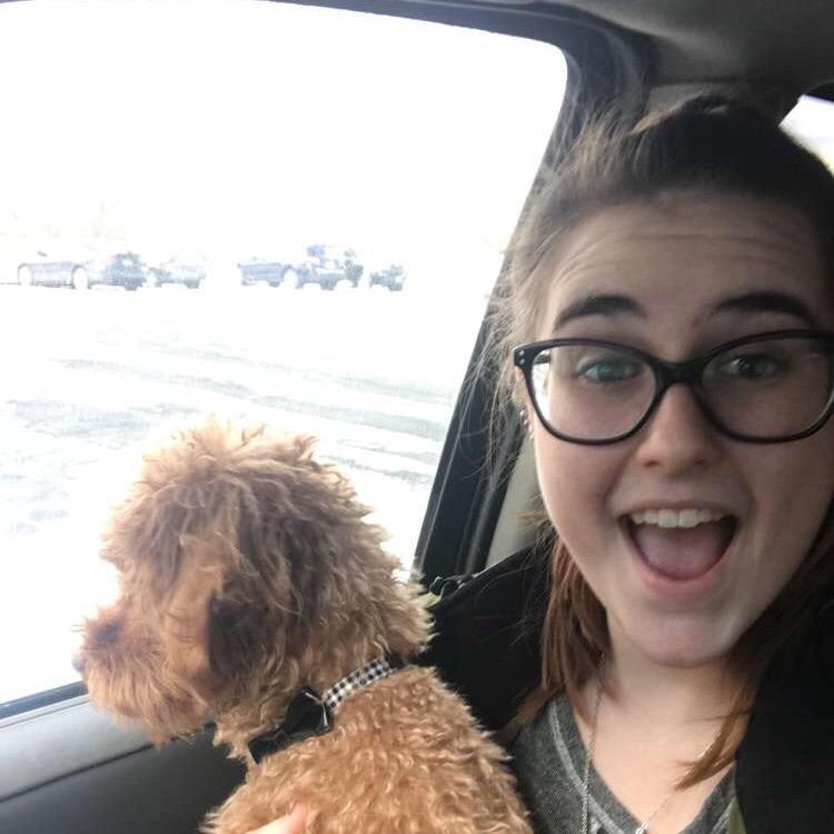 Jessy's dog day care