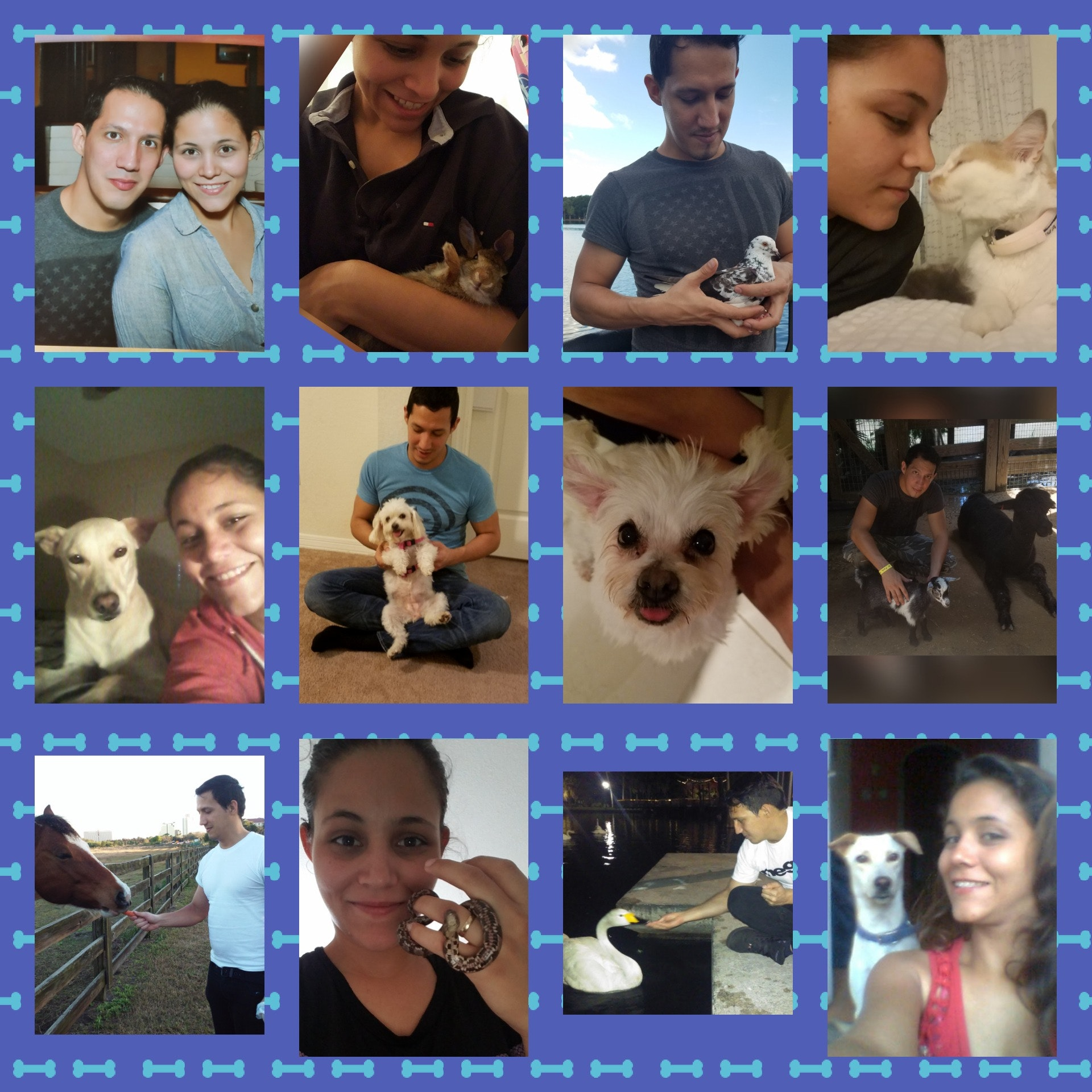 Giangela's dog day care