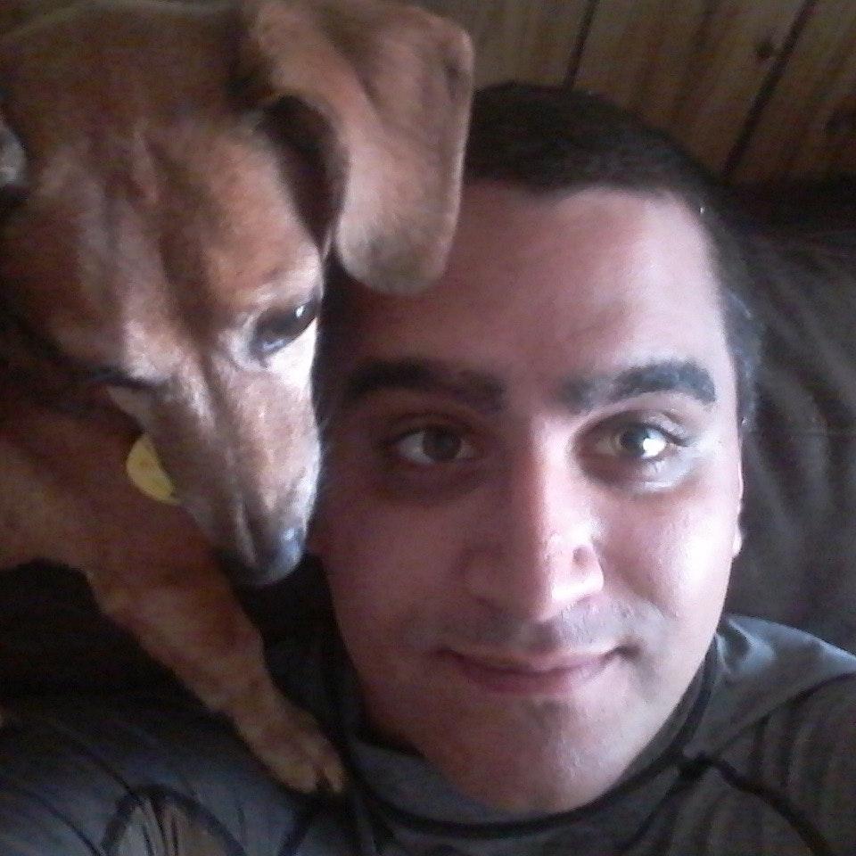Nicholas's dog day care