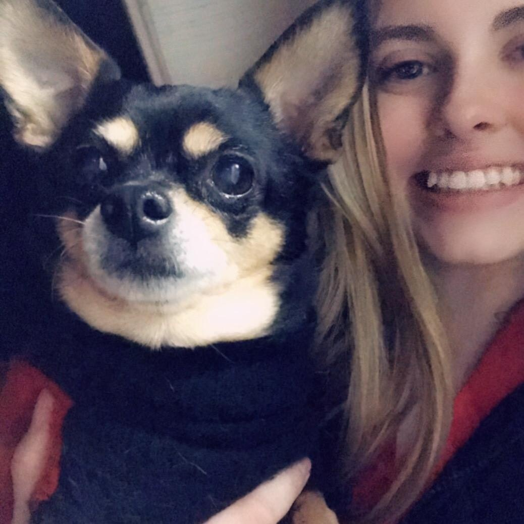 Kaitlyn's dog boarding