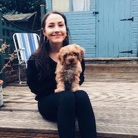 Phoebe's dog boarding