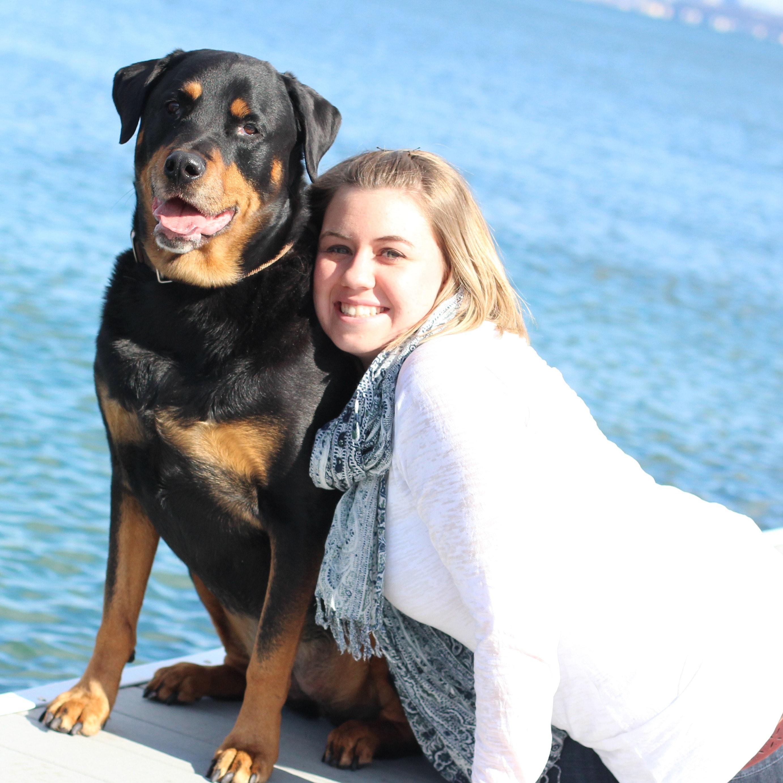 Megan's dog boarding